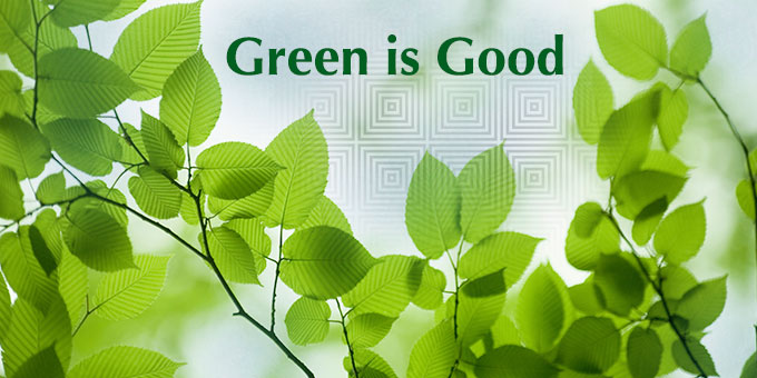 Madison home equity loans help you go green.