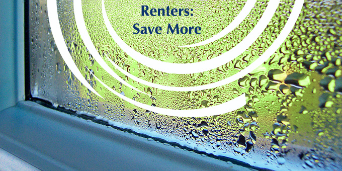 Find out how to save money by going green even if you're renting.