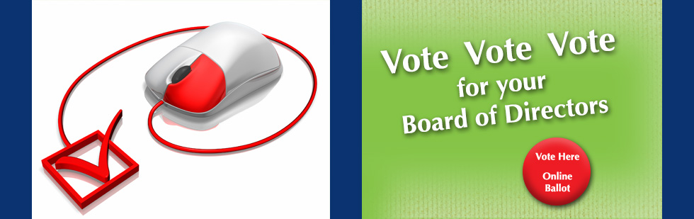 Vote for your board of directors now
